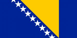 لغات کاربردی بوسنیایی
