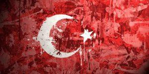 لغات کاربردی ترکی استانبولی